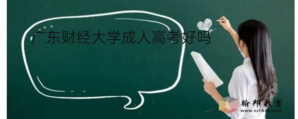 广东财经大学成人高考好吗